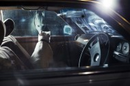 From Martin Usborne's The Silence of Dogs in Cars, via fastcocreate.com